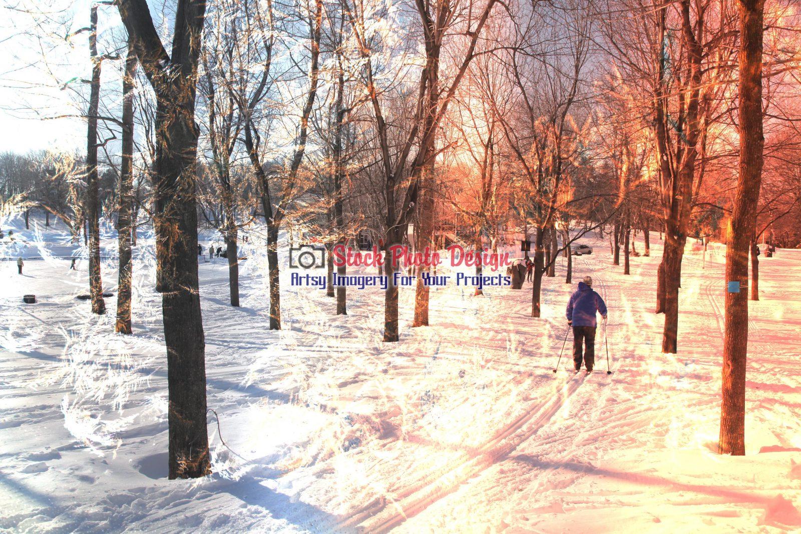 Winter-Scene-Photo-Montage-Image