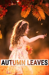 Effet Photoshop Autumn Leaves